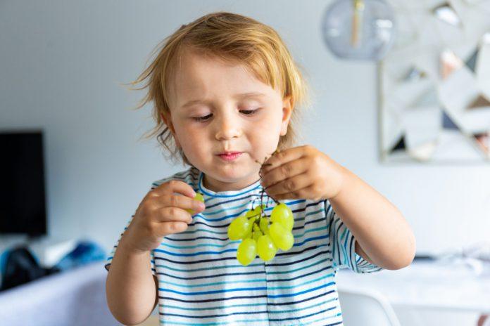 למה כדאי לתת לילדים לאכול ענבים